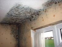 indoor2-technodal-Indoor Air Quality - I.A.Q.-Technodal